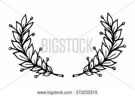 Laurel Branch As A Symbol Of Glory And Victory Vector Illustration With Black Lines In Hand Drawn St