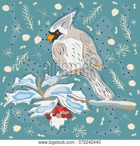 Pattern Of Cardinal. Scandinavian Hand Drawn Style. Vector Illustration