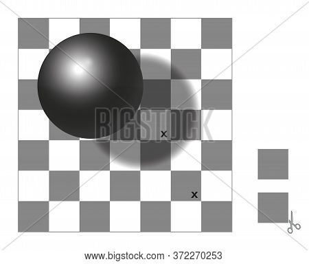 Optical Illusion. Checker Shadow Illusion. The Two Squares With X Mark Are The Same Shade Of Gray. C