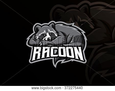 Raccoon Mascot Sport Logo Design. Racoon Animal Mascot Vector Illustration Logo. Wild Raccoon Mascot