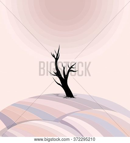 Pink Color Background Image Of The Abstract Lonely Tree