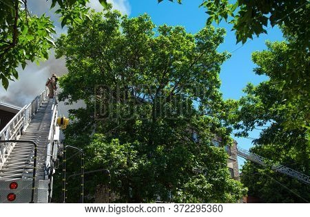 MONTREAL, CANADA - JUNE 18, 2020:  Firefighters climb skywards to tackle a blaze in a residential building in Montreal. Back view looking up the ladder through surrounding foliage and black smoke