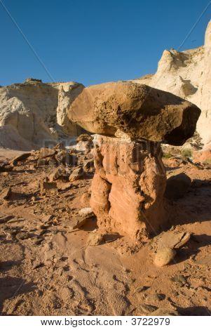 Desert Toadstool