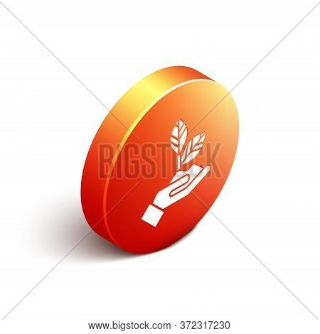 Isometric Plant In Hand Of Environmental Protection Icon Isolated On White Background. Seed And Seed