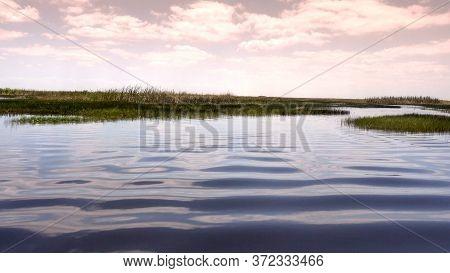 Amazing And Thrilling Ride Through Floridas Everglades