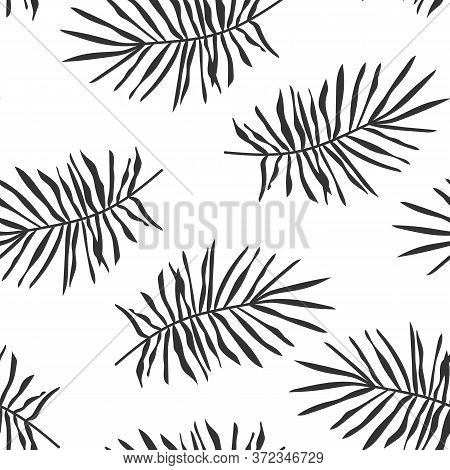 Black Tropical Palm Leaves Or Pine Branch Seamless Pattern. Limitless Background With Exotic Floral
