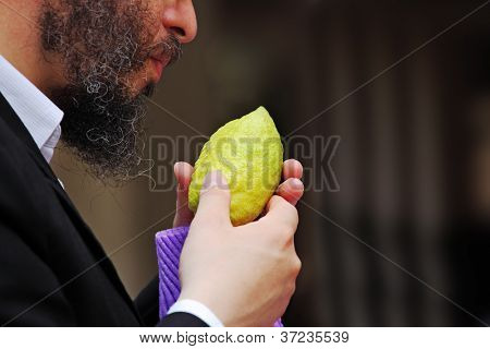 BNEI-BRAK, ISRAEL - SEPTEMBER 22: The religious Jews choose ritual plant citron on the bazaar on the eve of Sukkot September 22, 2010 in Bnei Brak, Israel. This was Sukkoth market