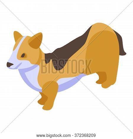 Puppy Corgi Dog Icon. Isometric Of Puppy Corgi Dog Vector Icon For Web Design Isolated On White Back