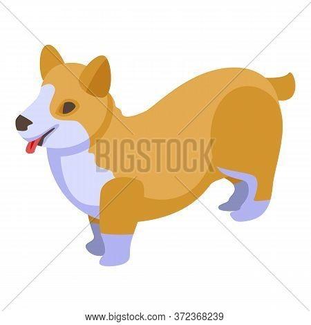 Breed Corgi Dogs Icon. Isometric Of Breed Corgi Dogs Vector Icon For Web Design Isolated On White Ba