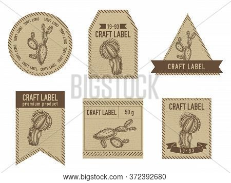 Craft Labels Vintage Design With Illustration Of Cactus Stock Illustration