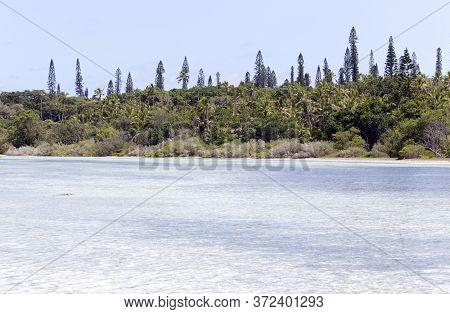View Of Ile Des Pins