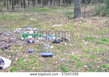 Forest Littering, Illegal Landfill. Bad Behavior Of People, Bad Ecology