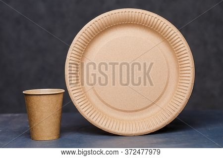 Disposable Cardboard Dishes Made From Environmentally Friendly Materials. Doesnt Clog Nature Eco-fri