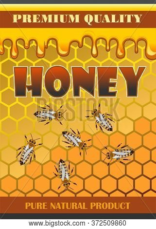Label For Honey. Bee Honey Packaging Sticker Design Concept. The Beautiful Appearance Of The Bank, A