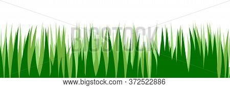 Grass. Vector. Juicy Spring Grass To Frame The Bottom. The Horizontal Location. Background Picture.