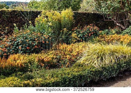 Giverny, France - August 31, 2019: This Is A Flower Bed In Picturesque Bright Colors In The Garden O