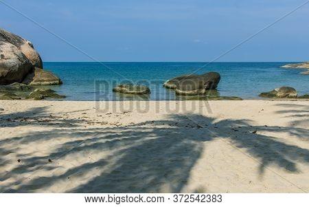 Koh Phangan Island White Sand Nudist Beach, Palm Tree Shadow