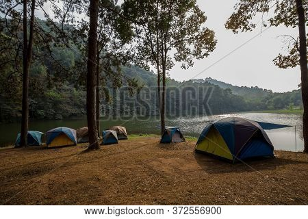 Camping Tents Under Pine Trees With Sunlight At Pang Ung Lake, Mae Hong Son In Thailand