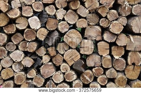 Firewood Prepared And Packed For Next Winter Season