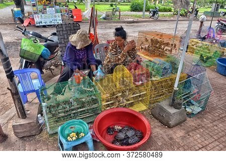 Cambodia, Phnom Penh 28,06,2017 Turtles And Birds In Cages Near The Temple. Sold To Set Free And Imp