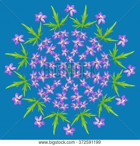 Mandala From Dried Pressed Flowers, Petals. Delphinium. Mandala Is Symbol Of Buddhism, Hinduism, Yog