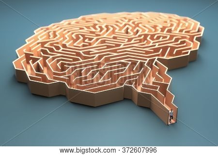 Brain Shaped Maze. Conceptual Image Of Science And Medicine. 3d Illustration.