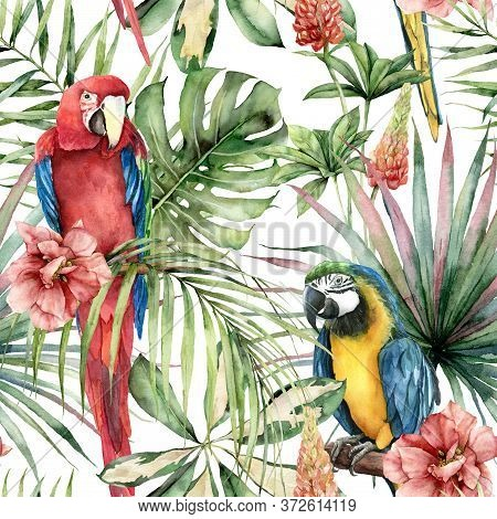 Watercolor Tropical Seamless Pattern With Parrots And Hibiscus. Hand Painted Birds, Flowers And Jung