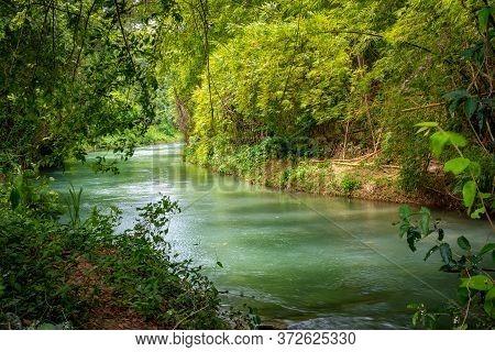 Martha Brae River In Falmouth, Trelawny Parish, Jamaica. Beautiful Lush Green Natural Canopy Foliage