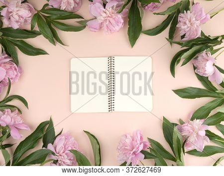 Open Spiral Notebook With Blank White Pages On A Beige Background, Blooming Pink Peonies Around The