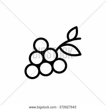 Fruit, Grape Concept Line Icon. Simple Element Illustration. Fruit, Grape Concept Outline Symbol Des