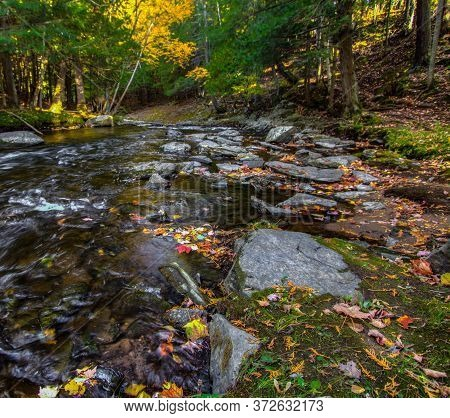 Autumn River Landscape. River With Fall Leaves On The Bank Flows Through The Lush Forest Of The Nort