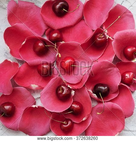 Ripe Cherry On Red Rose Petals. Background.