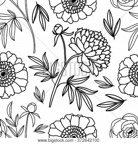 Peonies. Floral Decorative Pattern. . Seamless Pattern On A White Isolated Background