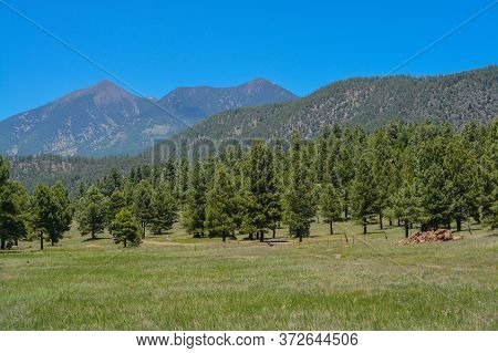 The View Of Mount Humphreys And Its Agassiz Peak. One Of The San Francisco Peaks In The Arizona Pine