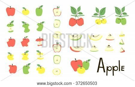 Apple Whole, Cut, Bitten, Apple Core. Apple Half And Slices. Apple Tree Branches With Leaves. Set Of