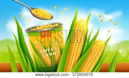 Sweet Corn Realistic Vector Advertising Poster. Open Tin Can Or Conserve With Golden Yellow Corn Gra