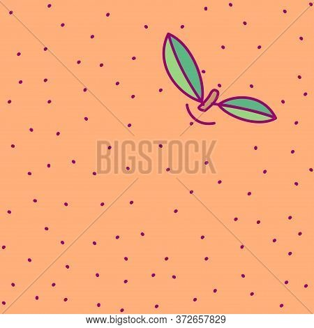 Vector Template Cute Fruit. Print For Disposable Tableware