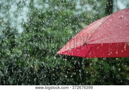 Rain, Close Up Of Umbrella In The Rain With Copy Space