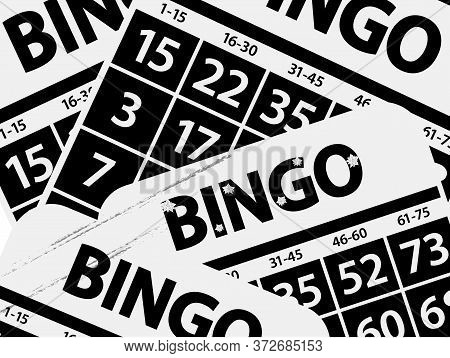 Black And White Photo Negative Effect Bingo Bards Background With Decorated Bingo Text With Flowersa