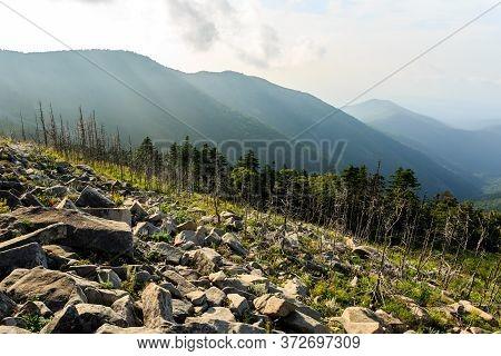 Dead Burnt Trees Near The Mountain Livadiyskaya - Pidan, Dead Forest In The Sikhote-alin Taiga, Russ