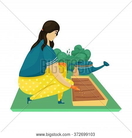 A Woman Plants Seeds In The Ground, Seedlings. Planting, Growing Vegetables. The Care Of The Garden.