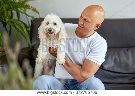 Handsome Man With White Dog At Home On Sofa