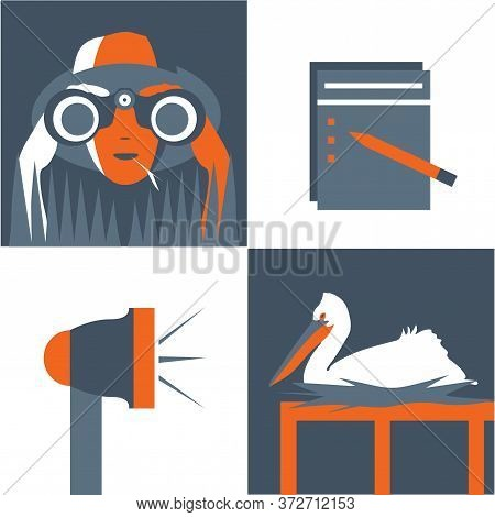 Bird Watching, Vector Icon Set, Vintage Poster, Minimal Duotone Illustration. Man Or Woman Looking T