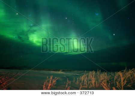 Active Aurora Through Clouds With Blurred Foregroud