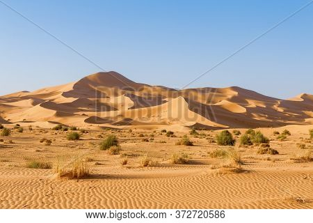 Picturesque African Dunes. The Hot Sands Of The Sahara.