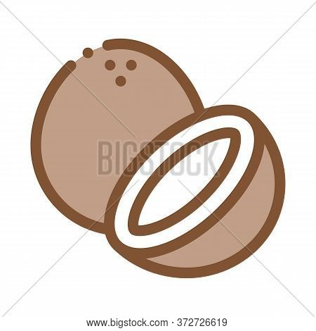 Coconut Nut Icon Vector. Coconut Nut Sign. Color Symbol Illustration