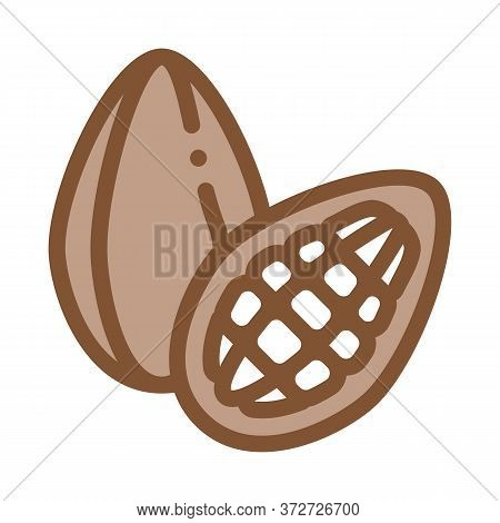 Cocoa Bob Icon Vector. Cocoa Bob Sign. Color Symbol Illustration