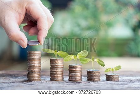 Hand  With Leaves Or Leaf Plant On Coins Forward For Profits Growth Up Collect Money Saving Money Co