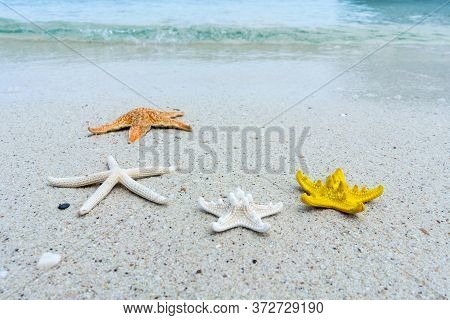 Starfish On The Sand Beach On Sunny Day With The Beautiful Sea Water On Holiday Time Concept Summer