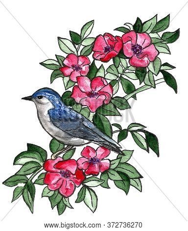 Hand Drawn Marker Illustration Of Plant With Flowers And Bird Sitting On The Branch. Floral Design E